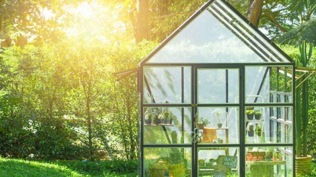 Szklarnia ogrodowa przy twoim domu